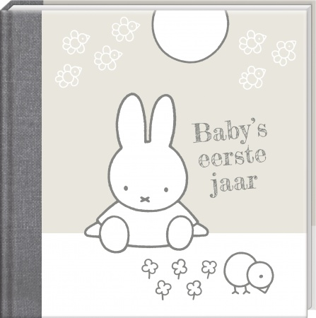 Interstat<br> Baby's Eerste Jaar Zilver