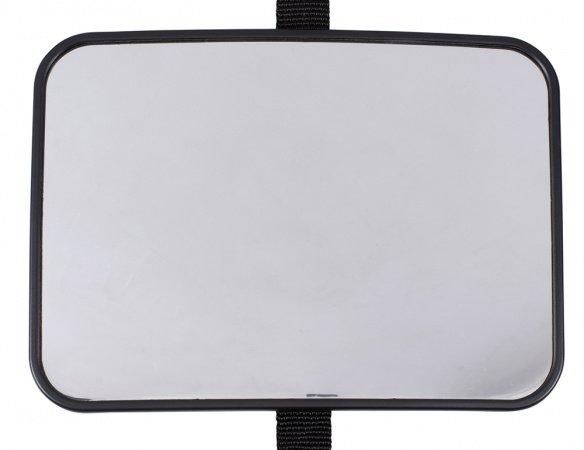 Puck Autospiegel