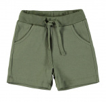 Shorts Deep Lichen Green