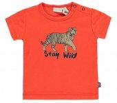 T-Shirt Korte Mouw Stay Wild Grenadine