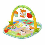 Chicco Playgym Activity 3 in 1